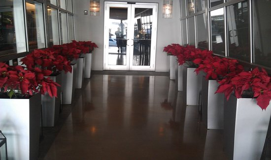 Z Ocean Hotel South Beach: Main entrance at Christmastime