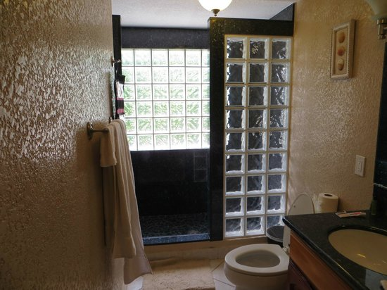 Pelican Reef Villas Resort: one of bathrooms, shower