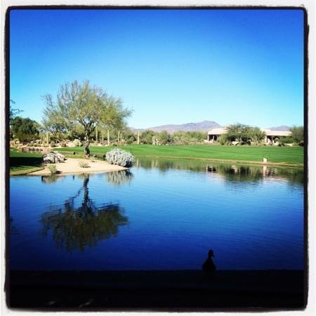 Boulders Resort & Spa, Curio Collection by Hilton: View from our Casita!
