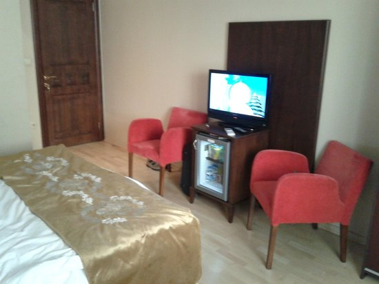 Villa Pasha Hotel: Good size TV screen
