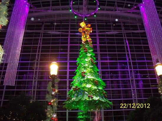 Gaylord National Resort & Convention Center: Christmas Tree Lighting in Atrium