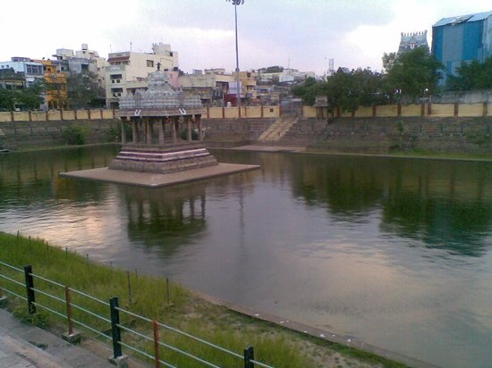 Sri Parthasarathy Temple : Temple Tank