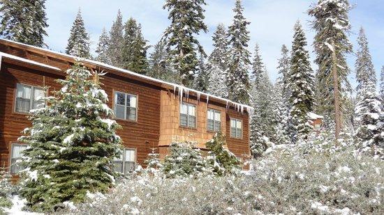 Wuksachi Lodge: Eiszapfen am Haus