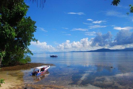Raja Laut Dive Resort照片