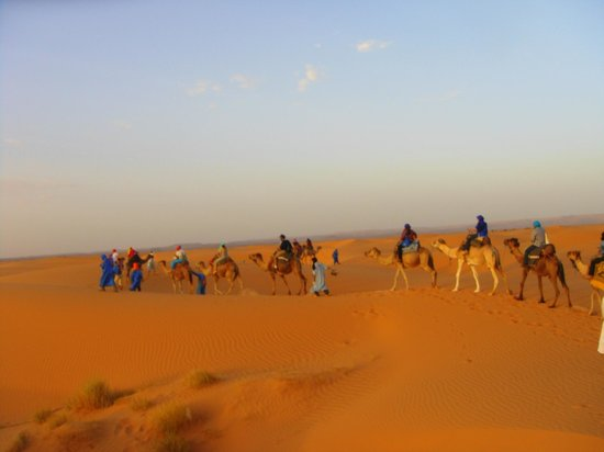 Sahara Treasures Day Tours : Caravana
