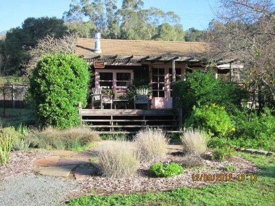 Sonoma Chalet: Sara's Cottage