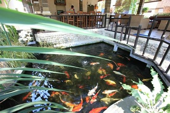 Sukun Bali Cottages: KOI POND RESTAURANT