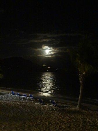 Divi Carina Bay All Inclusive Beach Resort : Paradise