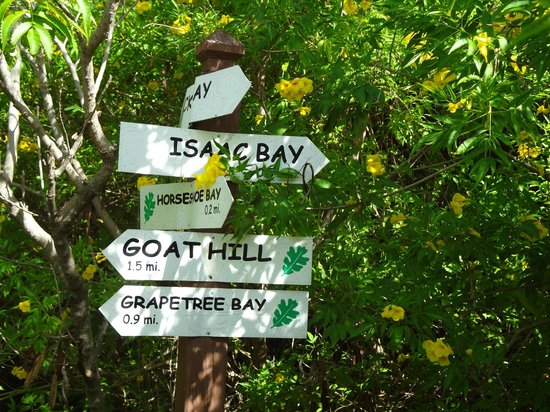 Divi Carina Bay All Inclusive Beach Resort : Hiking and snorkeling