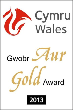 Brigydon: Gold Award for Excellence - two in two years!