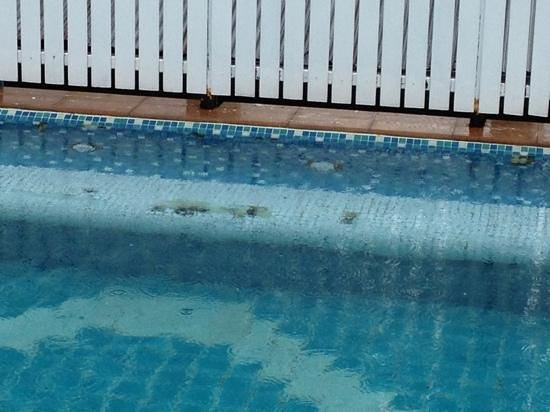 Beach Terrace Hotel Krabi: sharp edges so be careful