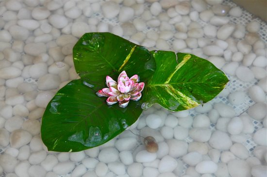 ITC Gardenia, Bengaluru: Water feature