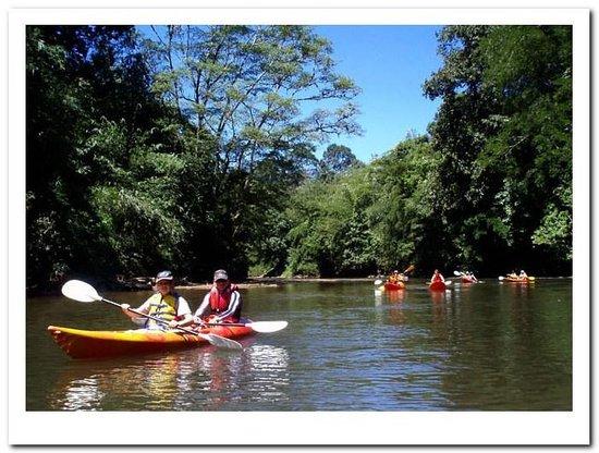 Kuching Kayaking