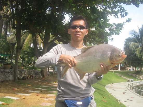 Hua Hin Fishing Lodge: paku