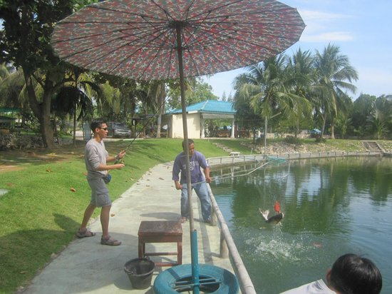 Hua Hin Fishing Lodge: fish in the net