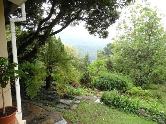 Porcupine Ridge Guest House: Blick von der Veranda ins Tal