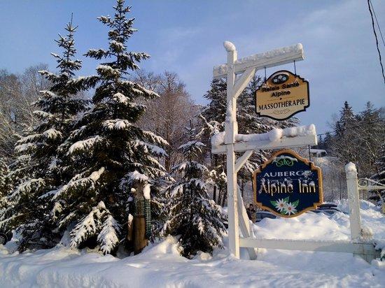 Hotel Alpine Inn: Un bel endroit à visiter