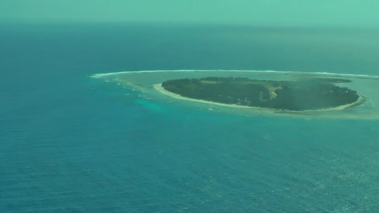 The Bay Bed and Breakfast: Lady Elliot Island