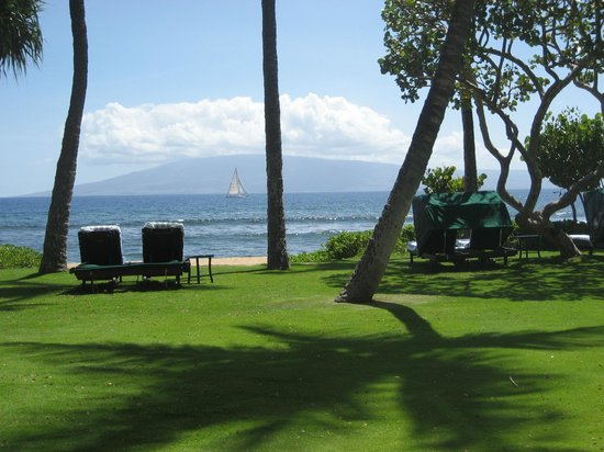 Marriott's Maui Ocean Club - Molokai, Maui & Lanai Towers: take a nap on a hammock with a view