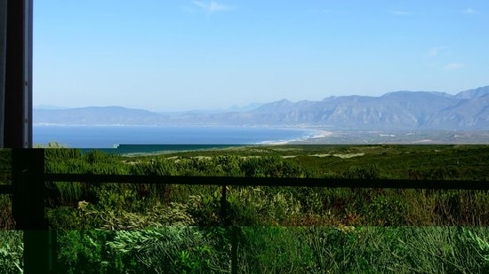 Horse Riding Grootbos Private Nature Reserve: View over Walker Bay from our luxury bedroom.