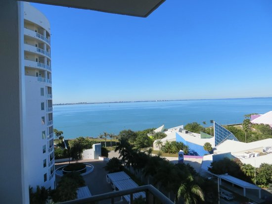 Hyatt Regency Sarasota: View from 8th floor.