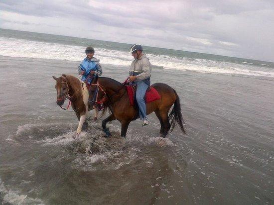 Kuda P Stables, Bali Horse Riding Experience: At the beach