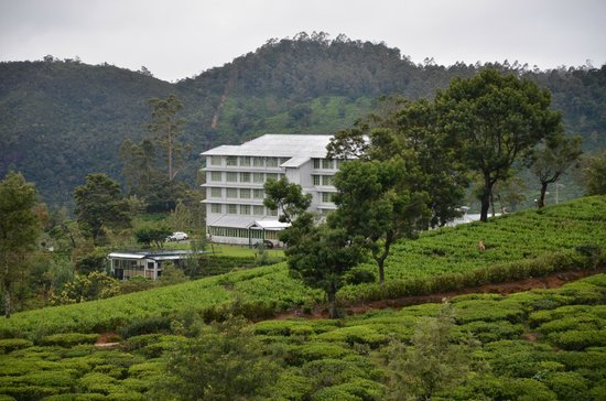 Heritance Tea Factory: L'hôtel