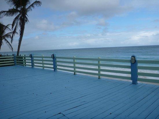 Sivananda Ashram Yoga Retreat : ocean platform