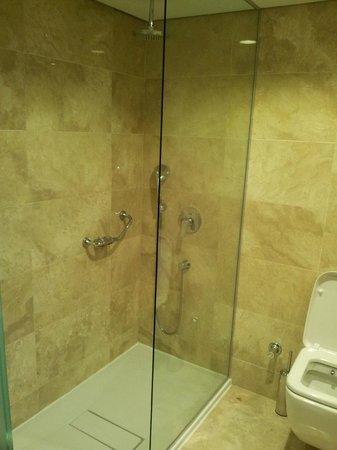 Senator Hotel: shower
