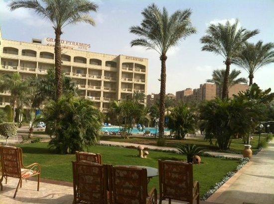Grand Pyramids Hotel: vue de l espace piscine avec palmier