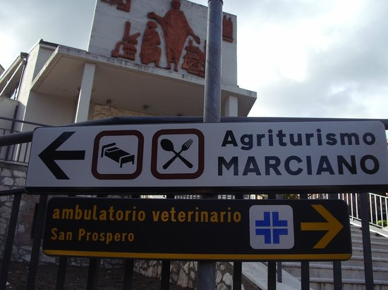 Agriturismo Marciano: Signs from town to the agriturismo