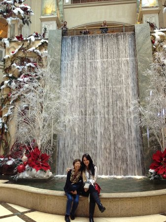 The Palazzo Resort Hotel Casino: Waterfalll in the promenade
