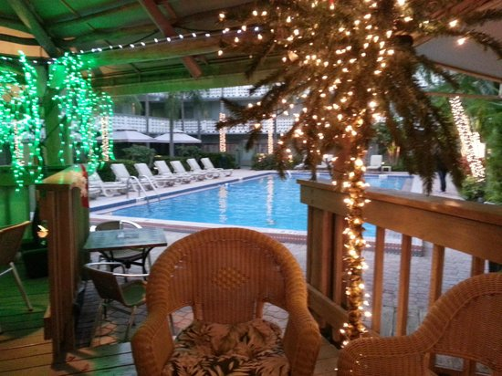 Ramada Fort Lauderdale Oakland Park: The pool from the tiki bar upper deck (loved the Christmas Lights...)