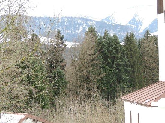 Mondi-Holiday Alpenblickhotel Oberstaufen: View