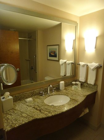 Hilton Garden Inn Portland Downtown Waterfront: Bathroom