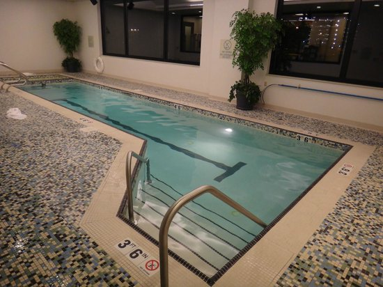 Hilton Garden Inn Portland Downtown Waterfront : Indoor pool
