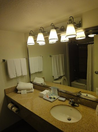 Four Points by Sheraton Destin- Ft Walton Beach: Bathroom lightings, awesome for putting on makeup