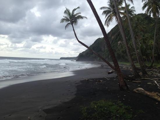 Blacksand beach at Rosalie Bay resort