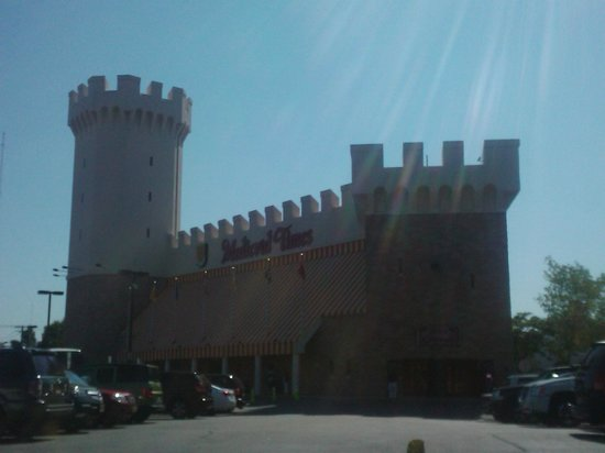 Medieval Times: THE CASTLE