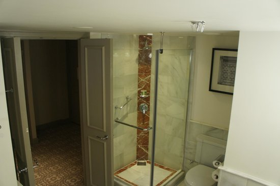 The Westin Dublin: shower