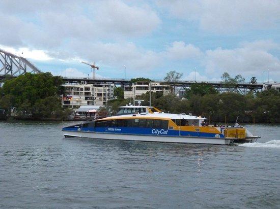 Sofitel Brisbane Central: CityCat