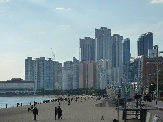 Haeundae Beach: ビーチ沿いのリゾートホテル