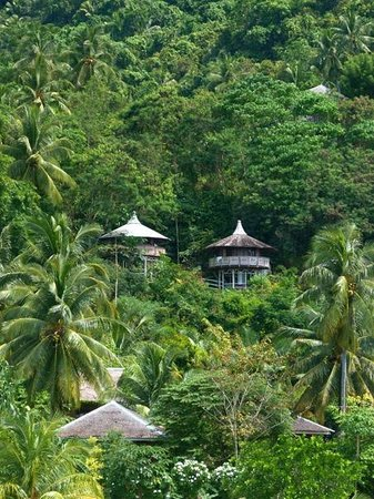 Hof Gorei Beach Resort: Hillside Round Huts