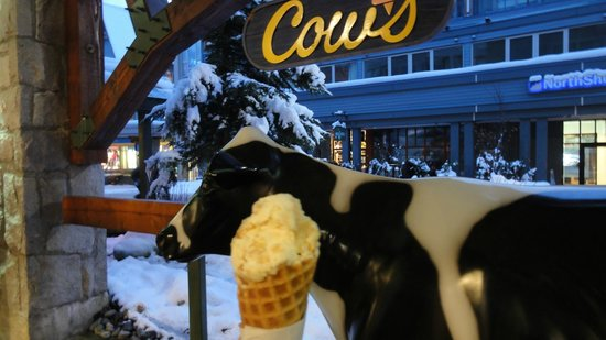 COWS Whistler: アイス