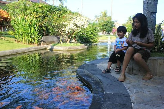 Discovery Kartika Plaza Hotel: the nice fish pond