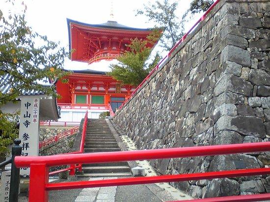 Nakayamadera: 良く目立つ本堂横の大願塔