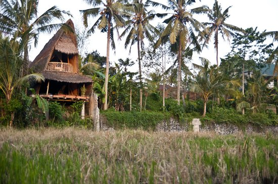Bamboo Village Le Sabot Ubud: the bungalow