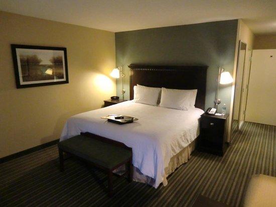 Hampton Inn & Suites Thousand Oaks: Zimmer mit King-Bett
