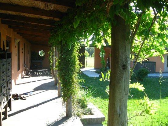 El Galope Farm & Hostel: Area externa de El Galope
