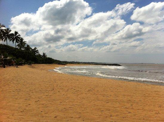 Ranweli Holiday Village: beach